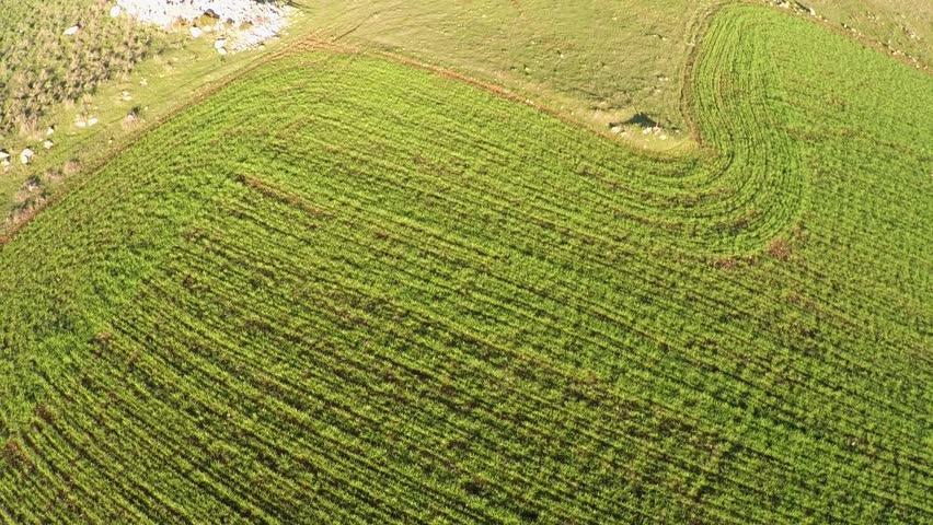 Aerial Landscape | Shutterstock HD Video #26227076