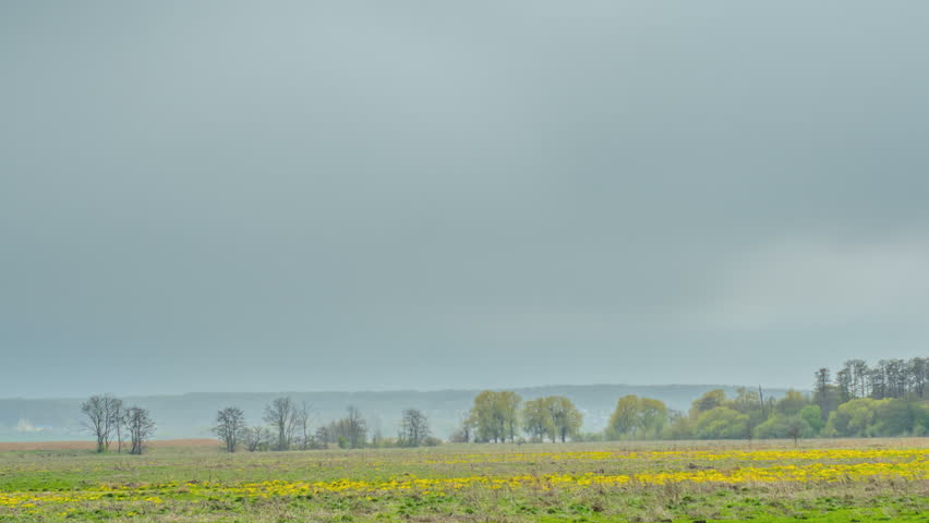 Rain at wild field at spring. Time lapse.   Shutterstock HD Video #26227598