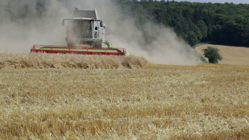 IDSTEIN - AUGUST 15: Large harvesting machines in a wheat-field nearby Idstein, Germany on August 15, 2012. European wheat futures rose sharply in July following concerns over drought in the United States. - HD stock footage clip