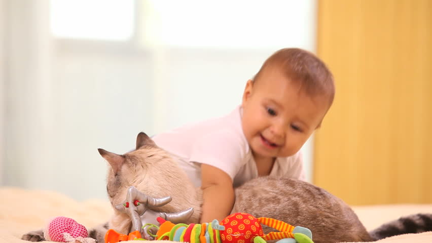 Adorable baby boy with cat sitting on the bed