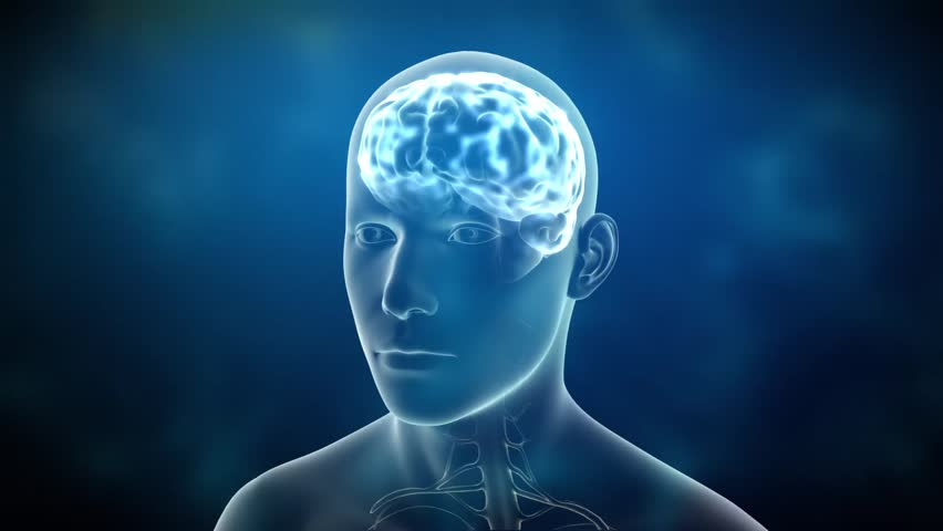 Neuronal Activity Male Blue Conceptual animation showing neuronal activity in the human brain.