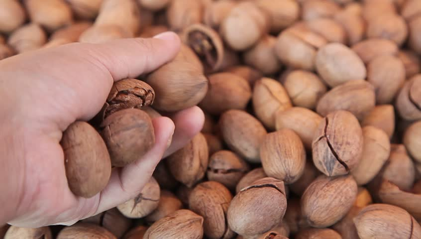 pecan in the market, select by hand