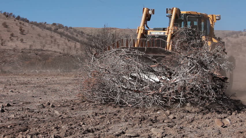 SANPETE COUNTY, UTAH OCT 2010: Environmental cleanup after devastating wildfire. Caterpillar bulldozer clears dead fire burned trees. Dragging chain between two machines. Trees killed and destroyed. - HD stock footage clip