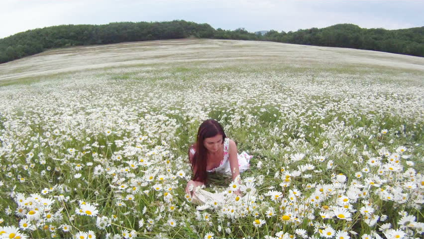 Woman Resting In A Field Of Blossoming Daisies. Stock ...