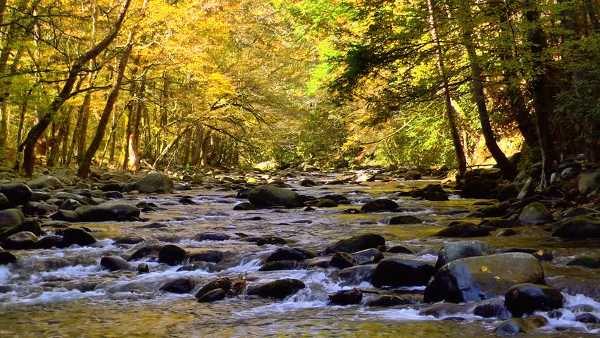 A river flows over rocks in this beautiful scene in the Tennessee mountains in autumn | Shutterstock HD Video #3363962