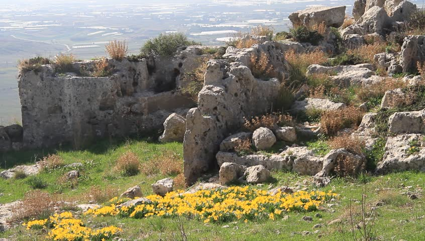 Ruins of ancient town Silyon and flowers, Turkey  - HD stock video clip