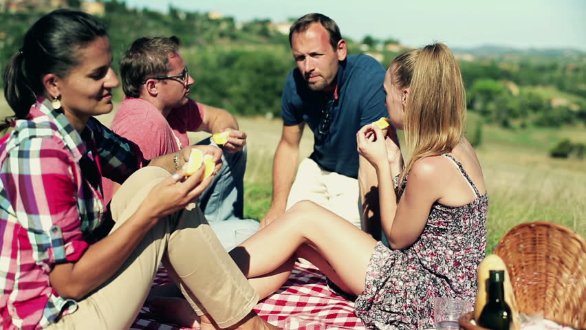 Group of happy friends on a picnic  - HD stock footage clip