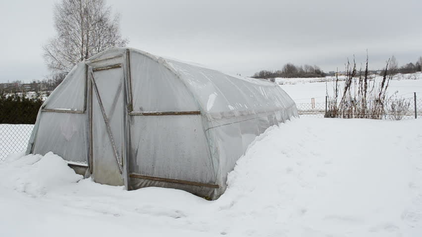 panorama of homemade wooden diy polythene greenhouse covered with snow and rotten apples in winter garden. snow falling. - HD stock video clip