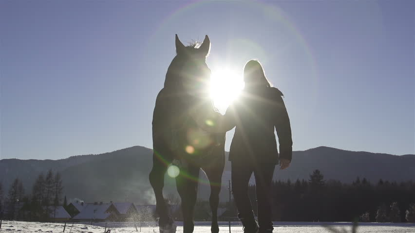 SLOW MOTION: Woman and a horse in winter land - HD stock footage clip