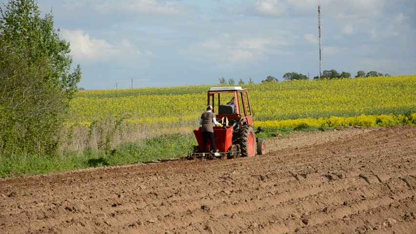 Tractor In Field Planting : Small tractor on farm field planting potato stock footage