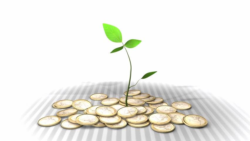 golden coins  savings  growing plant  huge excel