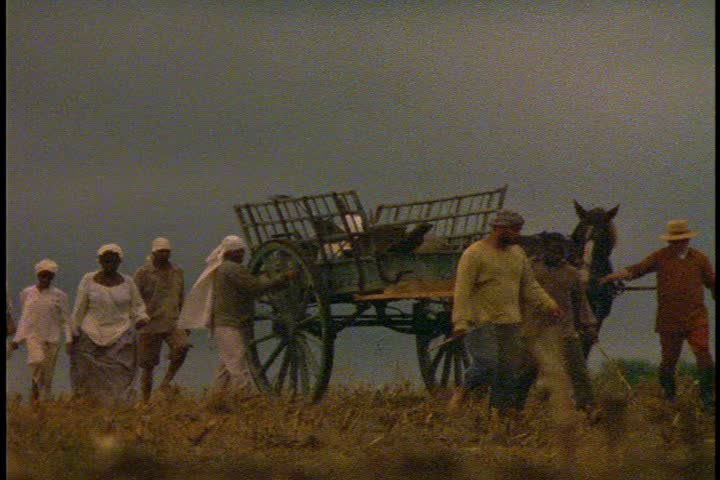 CARLISLE, MASSACHUSETTS - CIRCA 1990: Re-creations of slaves working on farm. Slave workers with horse and wagon cross come up over rise and walk towards camera. - SD stock footage clip