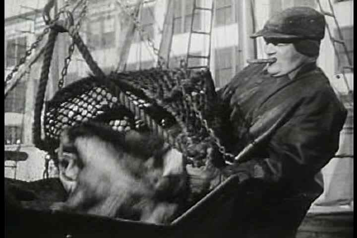 1950s - Mass production and factories with hundreds of specialized workers have allowed for greater productivity in all industries. Oscar Brand signs about fishermen, textile workers, logging,