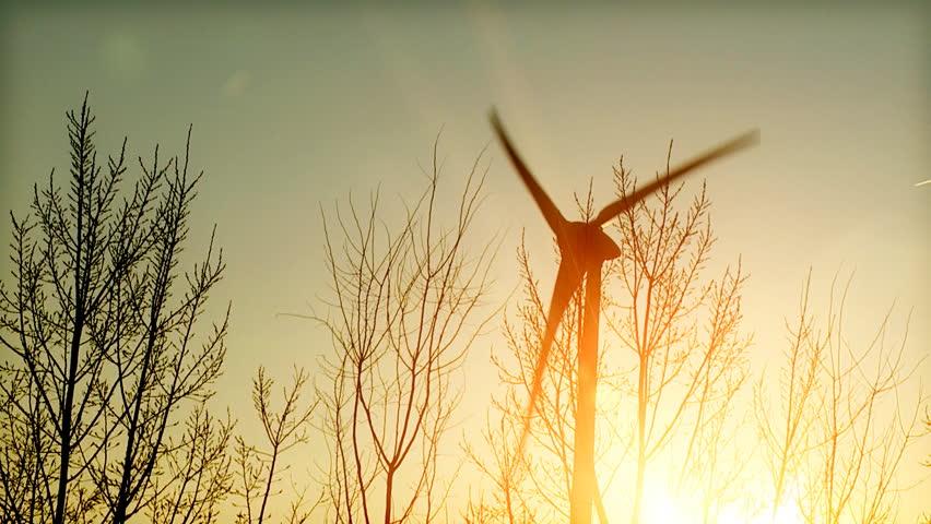 Wind turbine in the sun