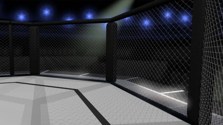 Interior Space Of An Octagon Shaped Sports Fighting Ring