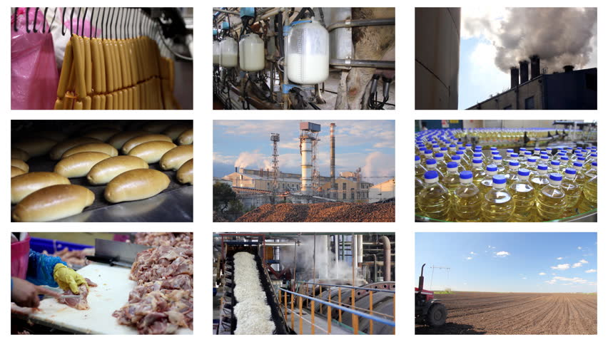 Industrial production, sugar factory, processing of corn, construction, agriculture, green beans, wheat, paving, bakery, dairy farm, poultry meat, oil industry, hot dogs,quarry, chicken farm.Timelapse montage - HD stock video clip