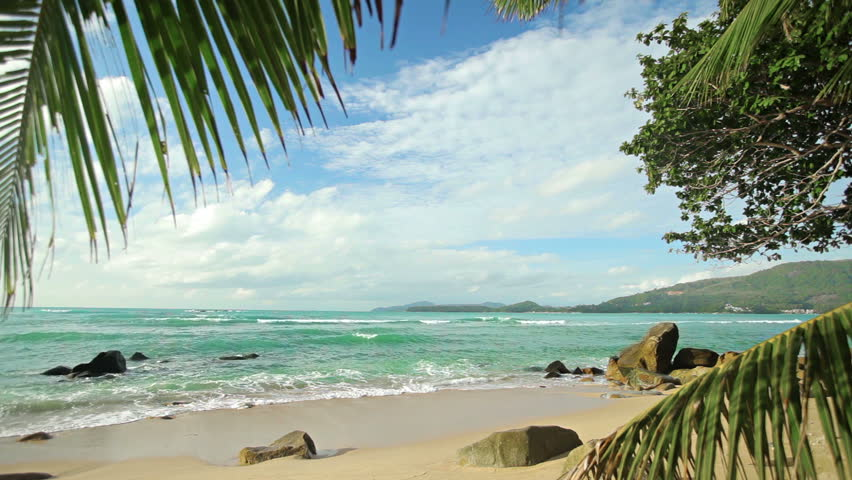 Video 1920x1080 - Deserted tropical beach with palm trees and small rocks - HD stock video clip