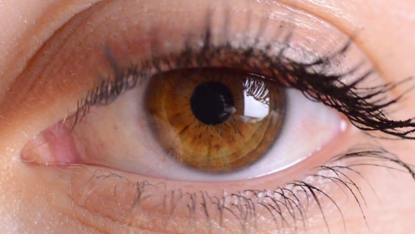 eye macro - HD stock video clip