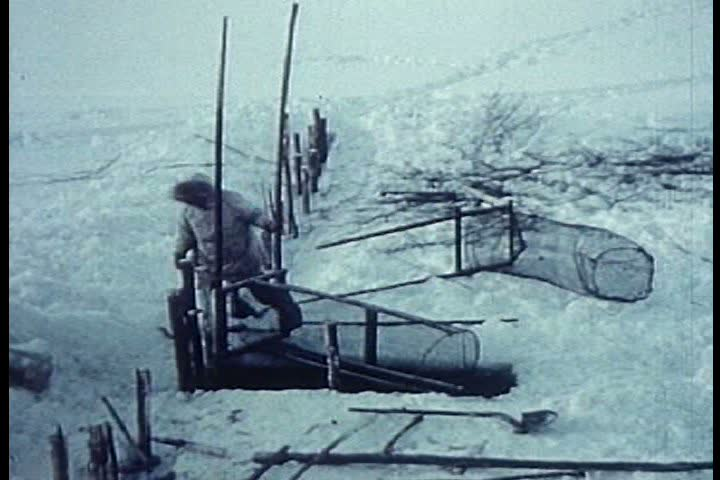1950s - Eskimos in the Arctic go on a hunt with a dogsled in the 1950s.