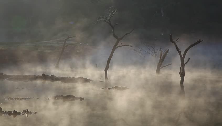 Jiulonghu, Zixi county in Fuzhou city, Jiangxi Province, China, mist in the autumn on lake surface