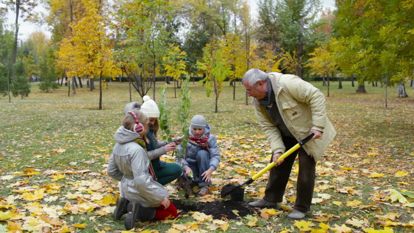 Grandfather, mother and two kids planting tree in the garden