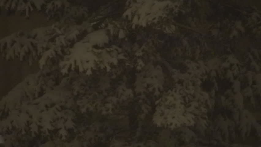 Snowing in Night, Snow Fall, Christmas Scene, Winter View Snow Storm, Blizzard - HD stock footage clip