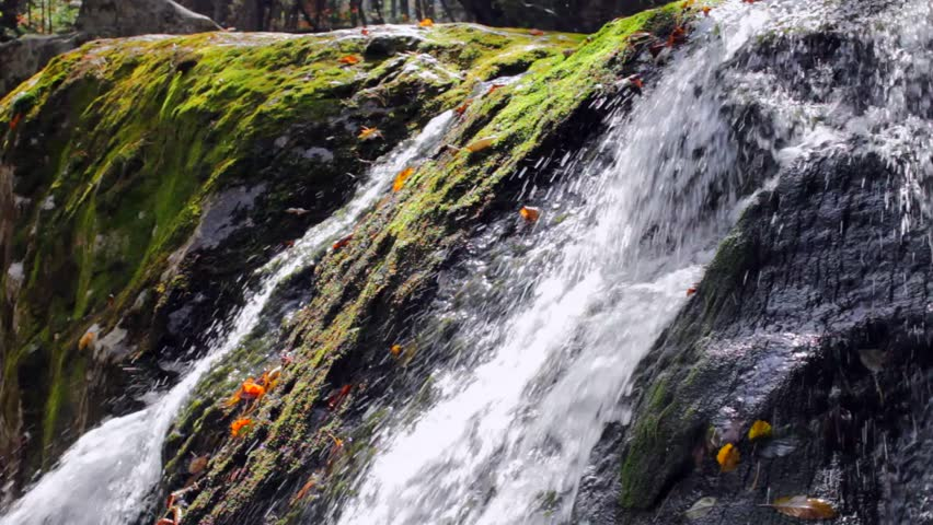 Pure fresh water waterfall in autumn forest - HD stock footage clip