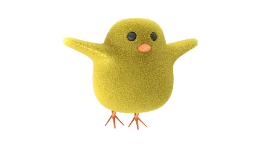 Flying Little Chicken on white background. HQ Seamless Looping Animation with Alpha Channel