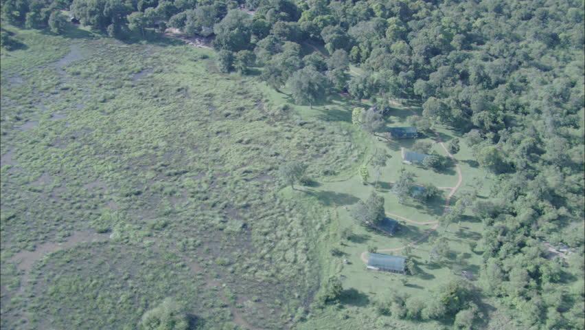 Nature Stream Bridges Grasslands Stones Trees