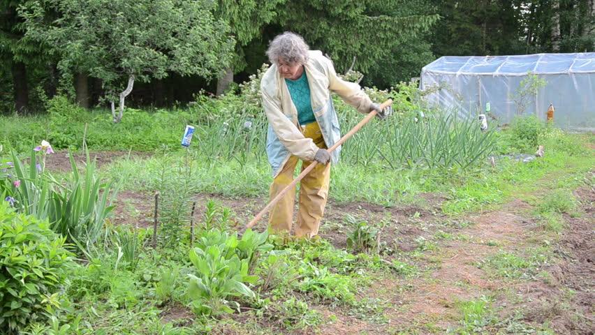 Senior woman with waterproof clothes weed vegetable garden in the rain stock footage video - Weeding garden make work easier ...