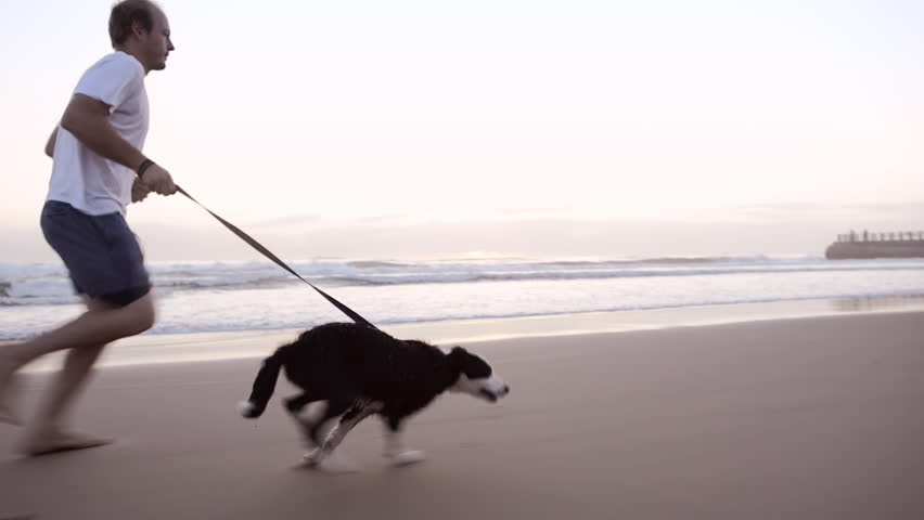 Happy man running dog on beach lifestyle steadicam shot - HD stock video clip