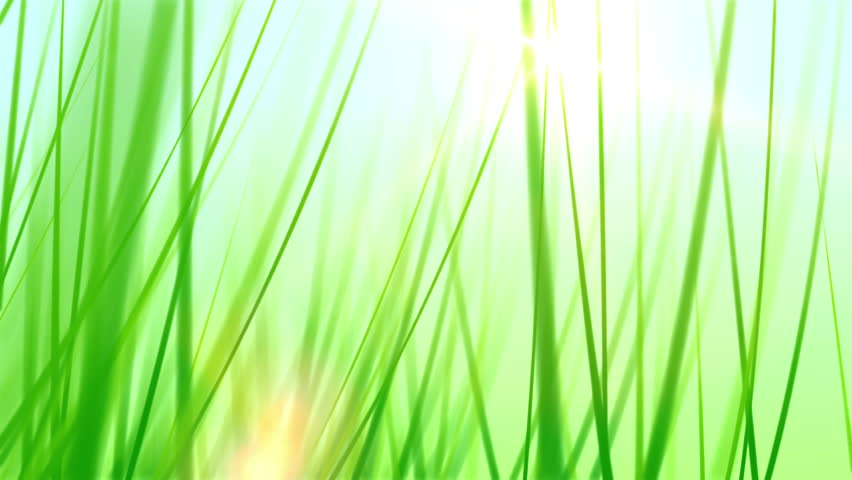 Grass Images | Free Vectors, Stock Photos & PSD