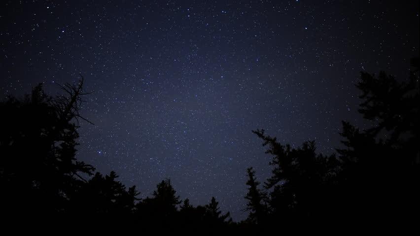4K Time Lapse of Starry Sky over Alpine Forest -Tilt Up-