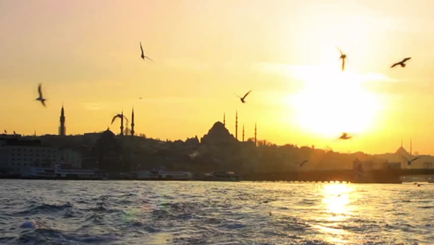 Cruising out from Istanbul. Slow Motion. Flock of ship following seagulls in the harbor. The atmosphere at sunset point is one of the most relaxed you will ever experience in Istanbul.
