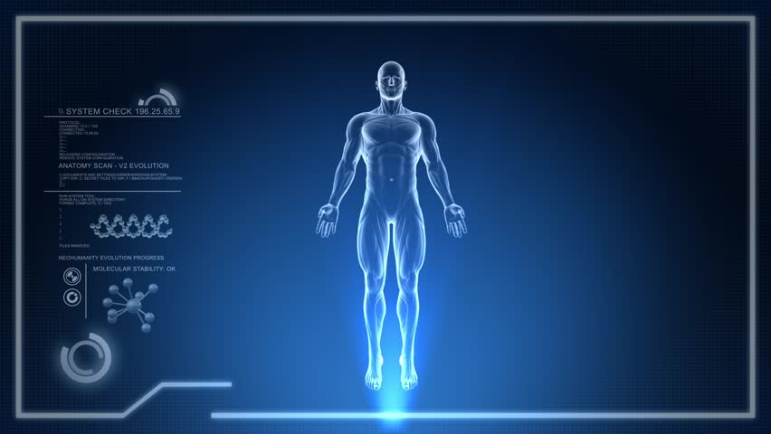 3D Animation of Human Body Anatomical scan on digital Screen Loop | Shutterstock HD Video #6437660