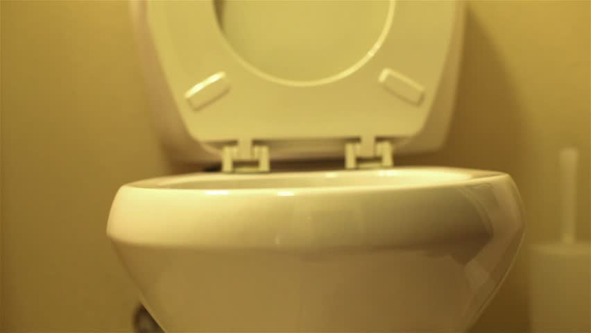 Lid of a toilet pulled up and then set down.