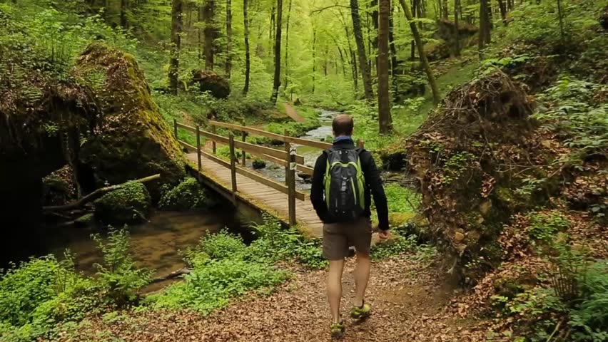 man hiking through narrow trail, green forest at background - HD stock footage clip