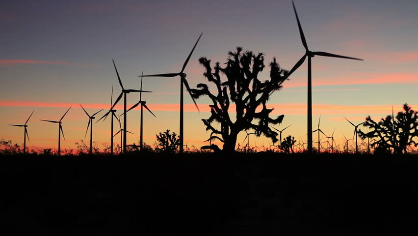 Natural Resources In The Mojave Desert