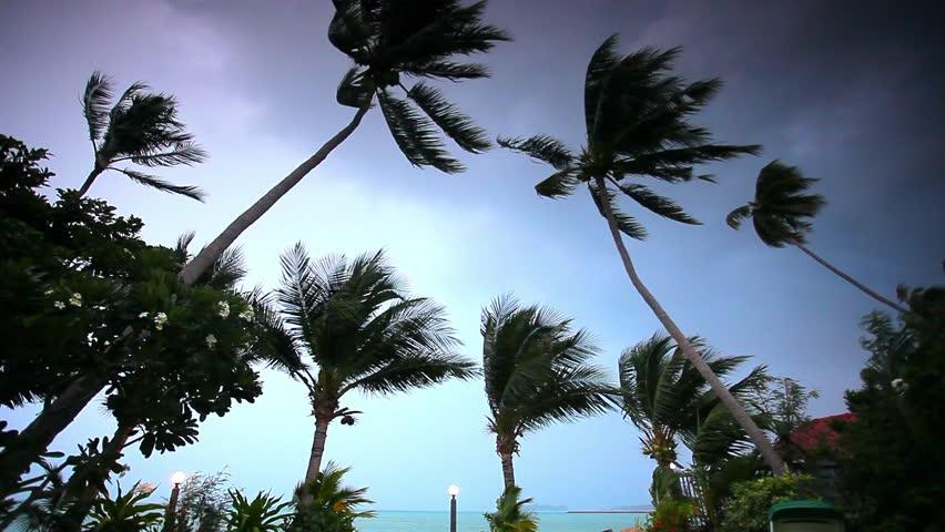 Rainy Season On Tropical Region Ocean Shore In Waiting Of