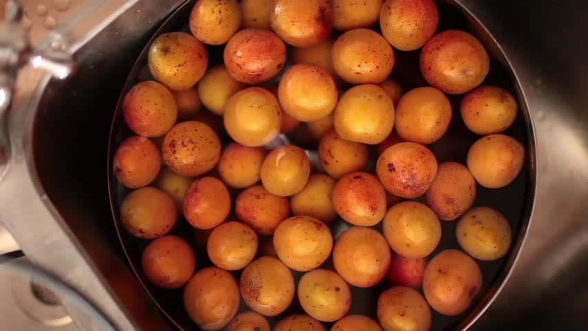 Apricots Wash - Video clip of hand washing apricots under the faucet.