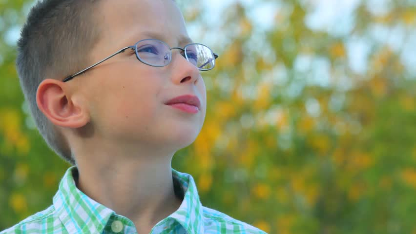 portrait of bespectacled boy stands against trees in park  - HD stock footage clip