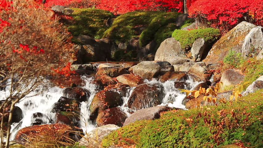 Autumn waterfall in the mountains