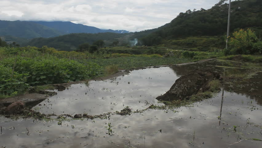 Water reflection on the rice fields in Sagada, Philippines
