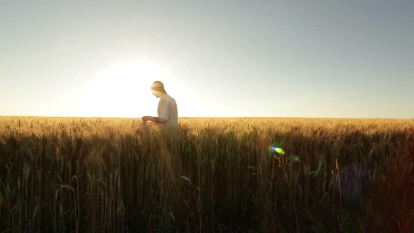 farmer in huge wheat field at sunshine