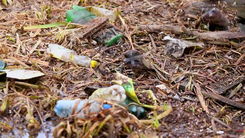 Trash on ground and in water nature pollution natural for Soil pollution definition