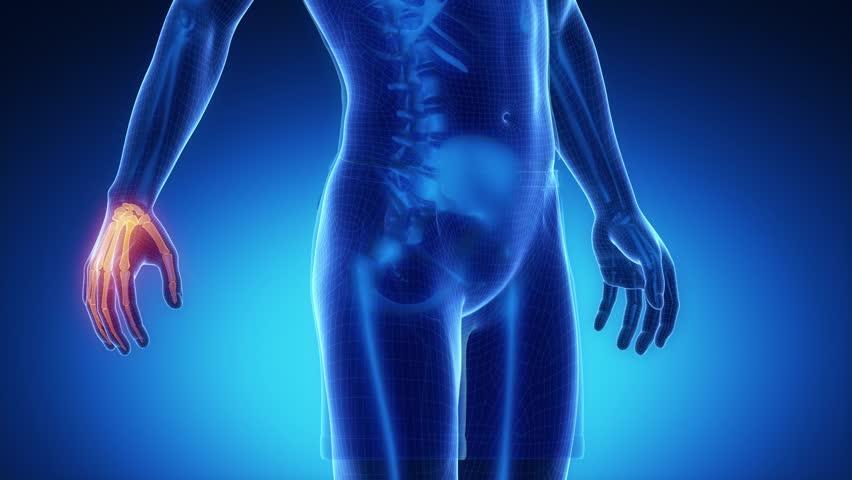 WRIST bone skeleton x-ray scan in blue - 4K stock footage clip