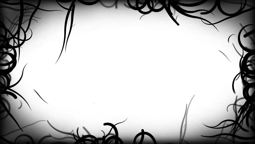 Black Vines Border Background Animation