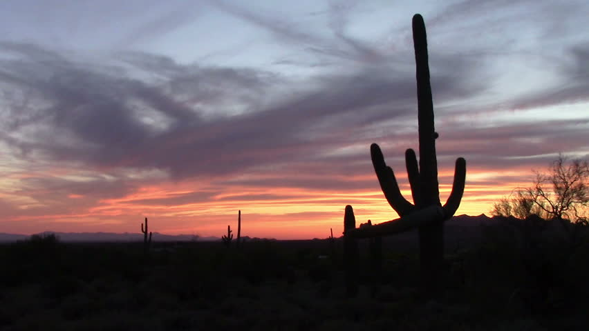 Saguaro Cactus  sunset in the Superstition Mtns in Lost Dutchman State Park Apache Junction, AZ. The park is famous for the legend of a gold mine discovered by German immigrant  Jacob Waltz  in 1891. - HD stock video clip