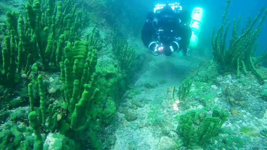 Scuba detecting (part - 1) \\ underwater video full hd we went metal detecting underwater at a swimming to baikal lake
